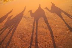 Sombra de cavaleiros do camelo em Wadi Rum, Jordânia foto de stock
