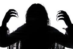 Sombra de la bruja Imágenes de archivo libres de regalías