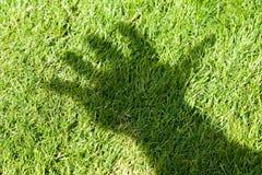 Sombra de la hierba verde y de la mano fotografía de archivo