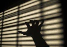 Sombra de la mano Fotografía de archivo libre de regalías