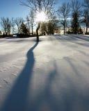 Sombra de la nieve Fotos de archivo libres de regalías