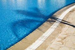 Sombra de la palma Imagenes de archivo