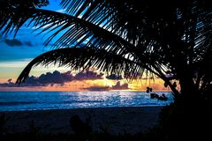 Sombra de la palma en puesta del sol Fotografía de archivo