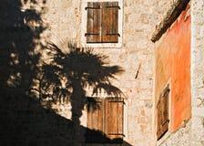 Sombra de la palmera en la pared de piedra vieja Foto de archivo libre de regalías