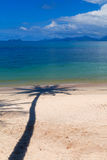 Sombra de la palmera en la playa Imagen de archivo libre de regalías