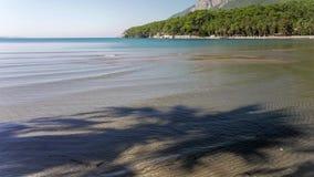 Sombra de la palmera en la playa arenosa con marea apacible en el mar 4K metrajes