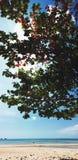 Sombra de la playa Imagenes de archivo