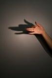 Sombra de la silueta de anubis Foto de archivo