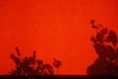 Sombra de las plantas de jardín en una cortina foto de archivo libre de regalías