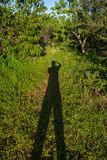 Sombra de minha sombra imagens de stock royalty free