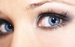 Sombra de ojo Fotos de archivo libres de regalías