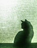 Sombra de um gato em cortinas da lona - vertical Fotografia de Stock
