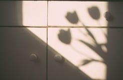 Sombra de um ramalhete das flores Imagem de Stock