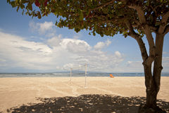 Sombra de uma árvore grande em uma praia Foto de Stock