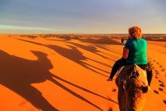 Sombra de uma caravana dos camelos com o turista no deserto em sóis Imagem de Stock