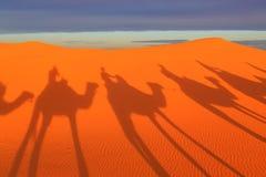 Sombra de uma caravana dos camelos com o turista no deserto em sóis Fotografia de Stock