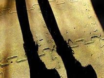 Sombra de uma silhueta fina da menina com pés e botas na rua em um dia ensolarado fotos de stock royalty free