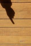 Sombra de una mano con un dedo índice Imágenes de archivo libres de regalías