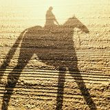 Sombra del caballo y del jinete de raza Foto de archivo libre de regalías
