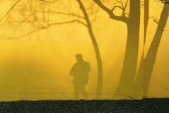 Sombra del fotógrafo Imágenes de archivo libres de regalías