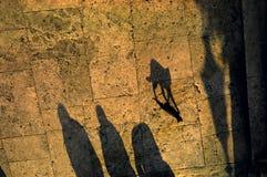 Sombra del gato Fotografía de archivo