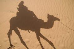 Sombra del jinete del camello foto de archivo