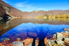 Sombra del lago y del árbol Imágenes de archivo libres de regalías