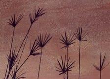 Sombra del papiro Fotografía de archivo