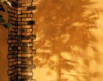 Sombra del patio Fotos de archivo