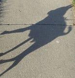 Sombra del perro Foto de archivo