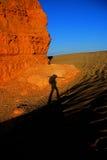 Sombra do caminhante Imagem de Stock Royalty Free