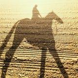 Sombra do cavalo & do jóquei de raça Foto de Stock Royalty Free
