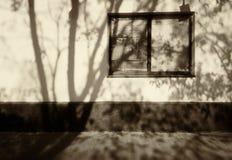 Sombra dramática da árvore no fundo do sepia da parede da casa fotografia de stock royalty free