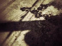 Sombra dura na parede do grunge Fotografia de Stock