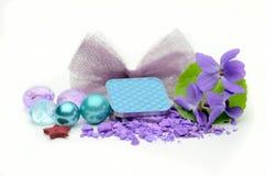Sombra e flores da cor Imagens de Stock