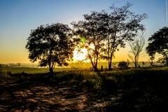 Sombra e luz. Um belo nascer do sol rompe a escuridão e traz a luz royalty free stock image