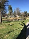 Sombra en el parque Imagenes de archivo