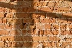 Sombra en la pared de ladrillo fotos de archivo