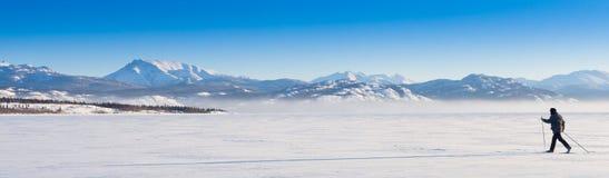 Sombra larga del esquiador a campo través Imágenes de archivo libres de regalías