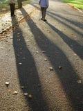 Sombra longa Imagem de Stock
