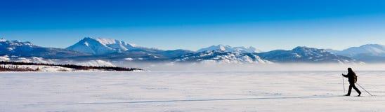 Sombra longa do esquiador através dos campos Foto de Stock