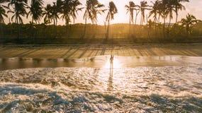 Sombra na água Paisagem tropical foto de stock