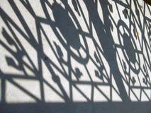 Sombra na terra Imagem de Stock