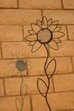 Sombra sobre un girasol Foto de archivo