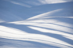 Sombras azuis onduladas abstratas da árvore na neve foto de stock