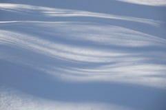 Sombras azules onduladas abstractas del árbol en la nieve Imagen de archivo