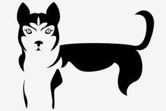 Sombras de Husky Figure ilustração stock