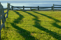 Sombras de la cerca en la salida del sol Fotografía de archivo