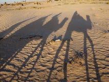 Sombras de los dromedarios que montan de la gente imagenes de archivo
