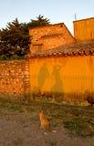 Sombras de observação dos povos do gato em uma parede. Fotos de Stock Royalty Free